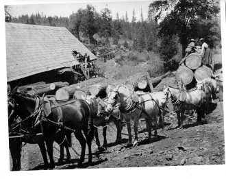 Load of logs to Manuel Mill