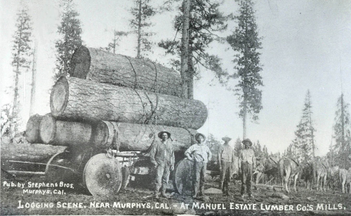 manuel-log-wagon