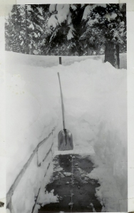 White Pines (9 ft of snow on the ground 1949)