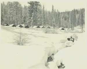White Pines winter of 1949