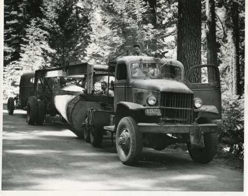 45 International Logging Truck