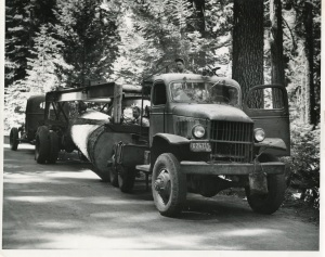 45 International Logging Truck