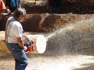 Chainsaw sawdust