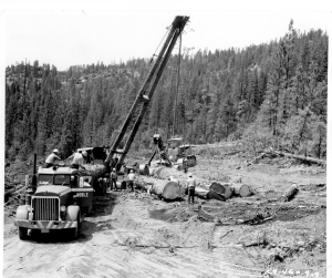 Noble Log Truck Loading smalljpg