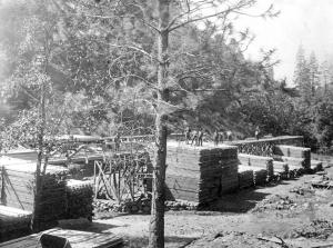 Raggio Mill, San Domingo 1908
