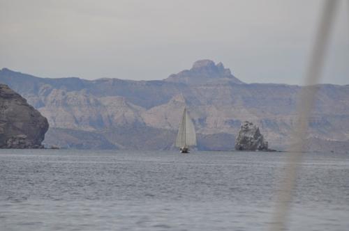 Blagen Boat new4