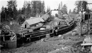 Loaded log cars at top of incline