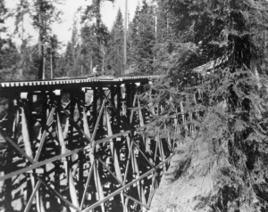 Trestle on Incline