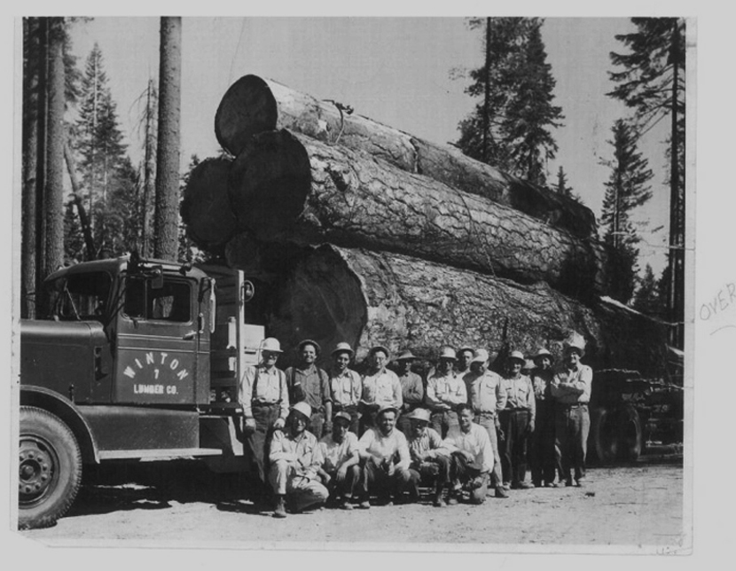 Winton Log Truck with full crew