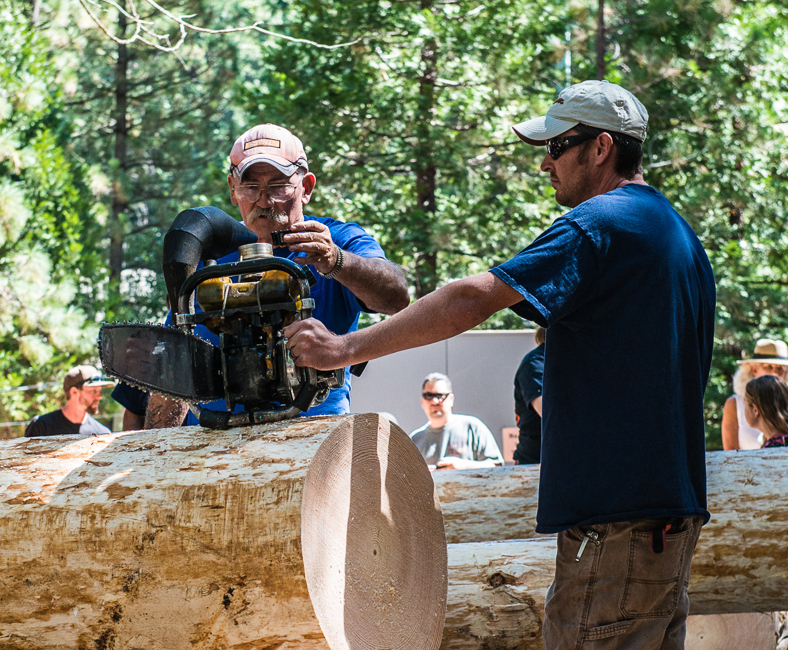2015 Logging Jamboree | Sierra Nevada Logging Museum